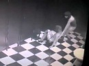 Скрытая камера в женском туалете 1   Видео