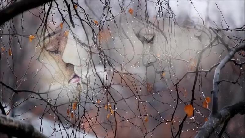 ОПОЗДАВШИЙ ДОЖДЬ Красивая песня Красивая музыка Дмитрий Королев_480p_MUX.mp4