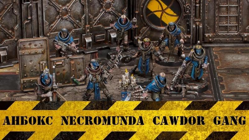 Анбокс Necromunda Cawdor Gang