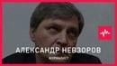 Александр Невзоров (28.12.2016): Желая избавиться от импотентности, российская оппозиция решила