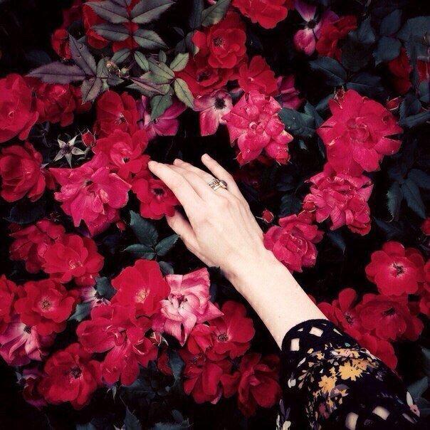 И душу свою я превратила в сад,