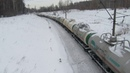 Электровоз ВЛ80С 1309 с грузовым поездом перегон Зелецино Кстово 30 01 2019