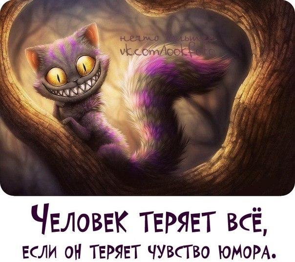 http://cs320722.vk.me/v320722650/5c93/BybZ5fFZUJw.jpg