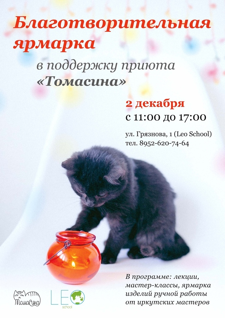 """Афиша Иркутск Ярмарка в поддержку приюта кошек """"Томасина"""""""