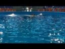 В дельфинарии Немо на Пхукете