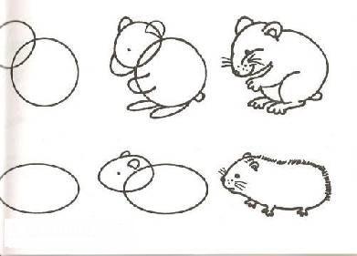 Как рисовать хомяков карандашом поэтапно