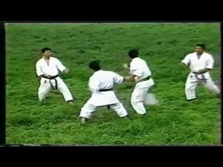 Хейан Нидан Бункай - Heian Nidan Bunkai
