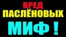 Вред ПАСЛЁНОВЫХ МИФ