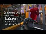 Сведение рук в тренажере бабочка с Антоном Ларионовым