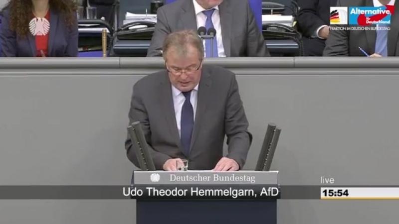 Udo Hemmelgarn- Sie betreiben politischen Pfusch am Bau- - AfD-Fraktion im Bundestag