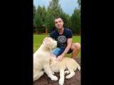 Сергей Куприк поздравляет Радио Шансон!