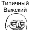 типичный Важский