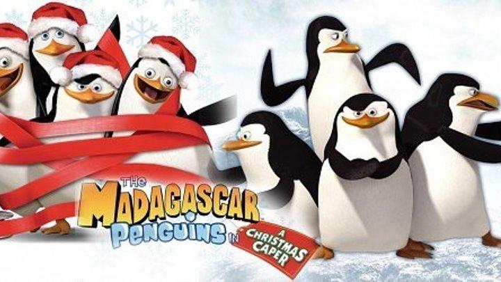 Пингвины из Мадагаскара в рождественских приключениях HD(мультфильм, короткометражка, комедия, семейный)2005