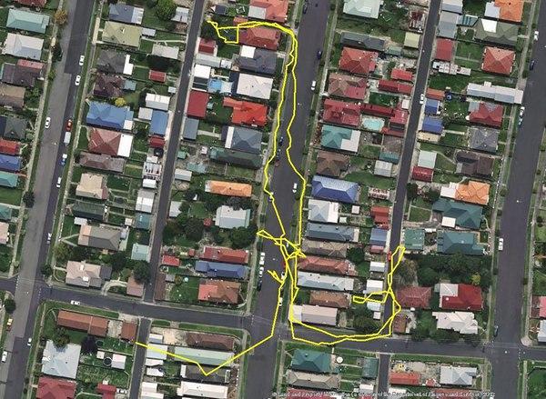 В австралийском городе Литгоу провели эксперимент, и надели нескольким котам ошейники с GPS передатчиками, чтобы узнать, где они гуляют ночами. Кажется, коты - инопланетные разведчики, направленные на нашу планету перед ее захватом.