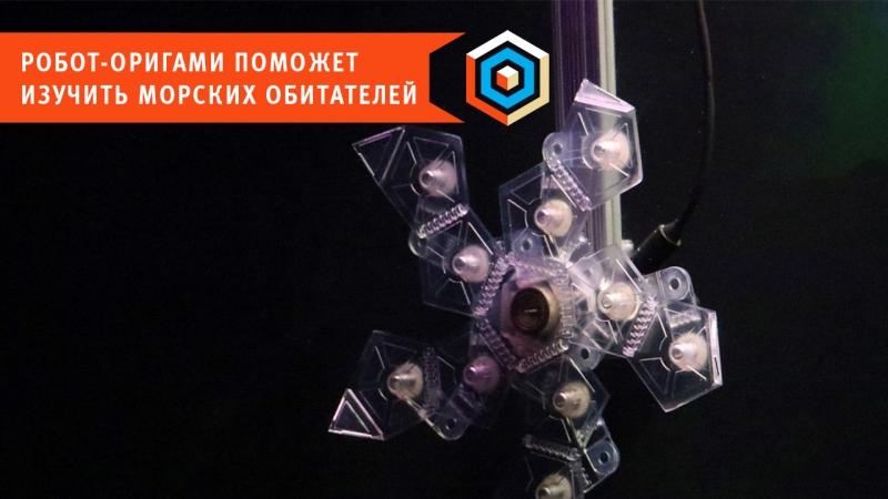 Робот-оригами поможет изучить морских обитателей