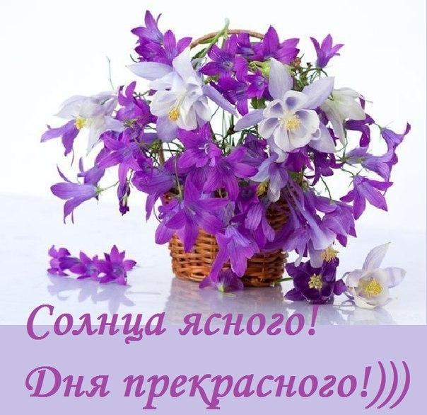 http://cs421725.userapi.com/v421725206/1b01c/1lY56HITbc8.jpg