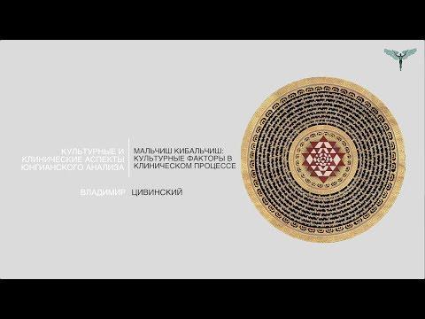 2. Владимир Цивинский - Мальчиш Кибальчиш культурные факторы в клиническом процессе