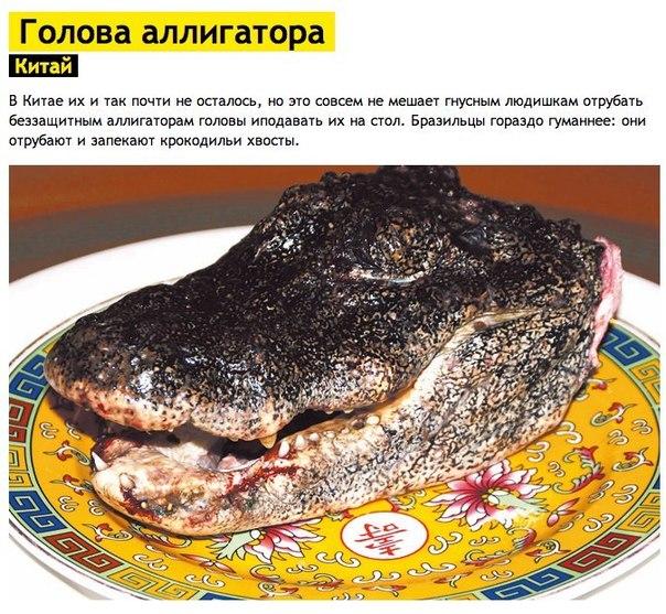7 cамых ужасных блюд мира
