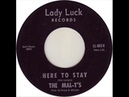 The Mal-T's – Here To Stay Stand Up Today ( 1967, Garage Rock, USA )