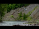 Fishing for Chinook Salmon - British Columbia