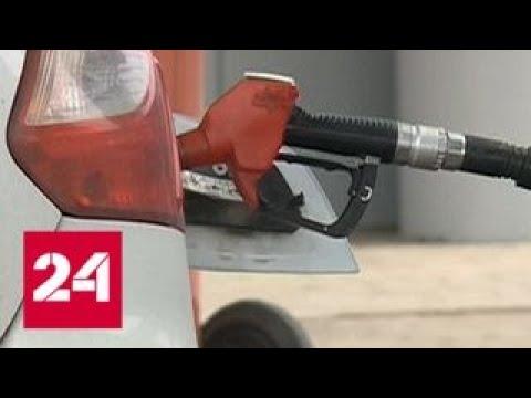 ФАС и ФНС будут проверять автозаправки, завышающие цены - Россия 24