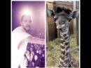 В мире животных с Николаем Николаевичем 5