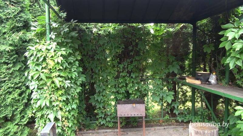Усадьба На Родниковой - площадка для шашлыков, Усадьбы Беларуси