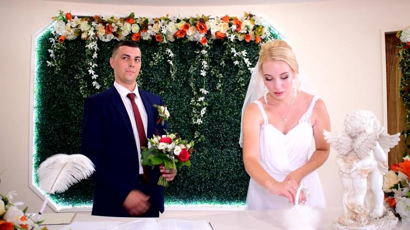 Торжественная церемония регистрации брака Александр и Дарья.