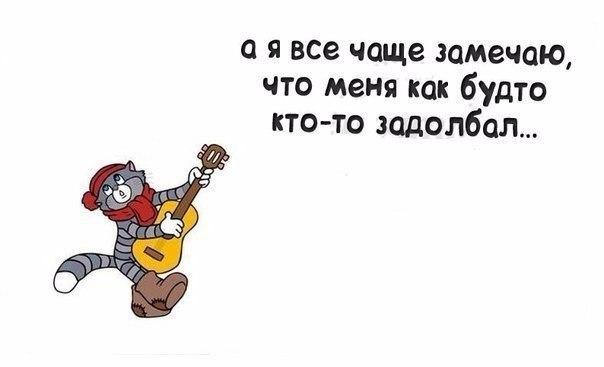 https://pp.vk.me/c543100/v543100891/4437b/JOJtQSHkHD4.jpg