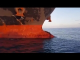 Lazy Seals Hitch a Ride on the Bow of a Ship - 998624_HIGH.mp4