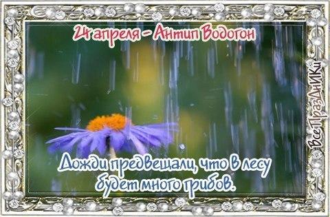 https://pp.userapi.com/c7003/v7003616/2fd4f/Rjc5DAi8OdI.jpg