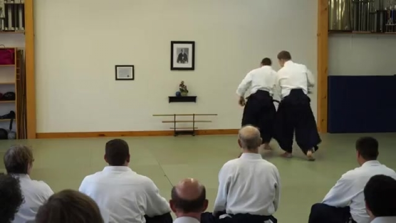 Jan Nevelius - brief demonstration at NOLA Aikido 2015.mp4