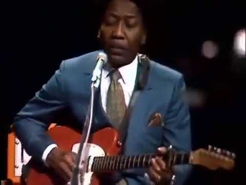 Muddy Mississippi Waters - Honey Bee