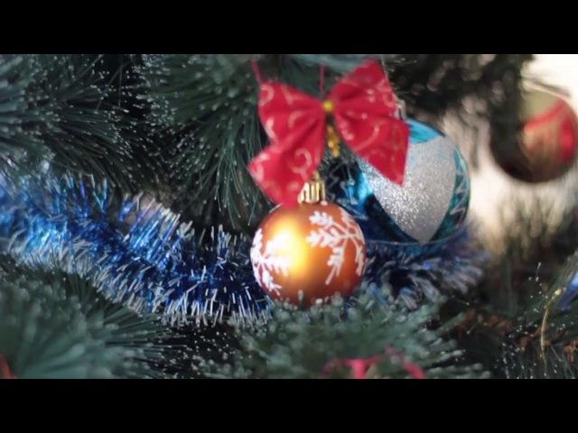 Новий рік | ArtZebra | Володимир-Волинський | Дитяча зйомка