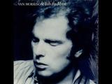Van Morrison - Troubadours