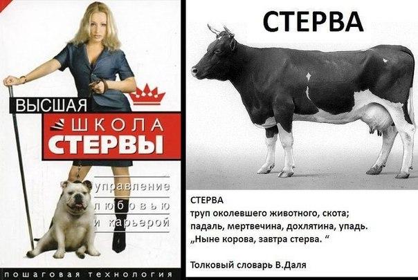 http://cs618831.vk.me/v618831565/f142/S_ZvAuX6X_0.jpg