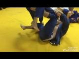 Тренировка детской спортивной группы с синими поясами