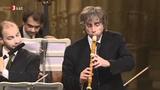 Il Giardino Armonico - Telemann - Concerto for, flute, strings in E minor PART2