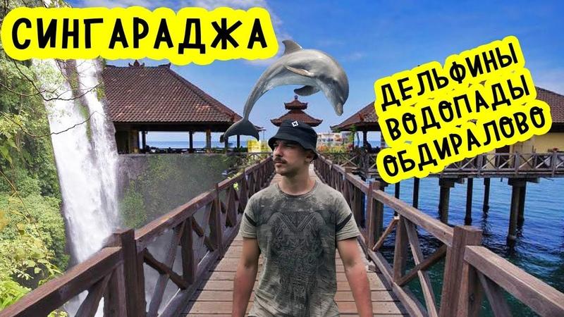 Сингараджа! Дельфины, водопады и обдиралово местных