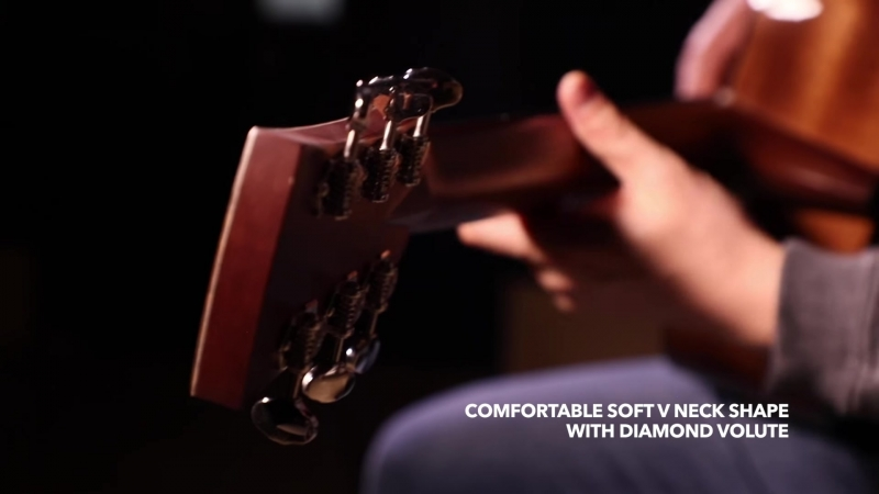 Ibanez Thermo Aged™ Acoustic Guitar - AVD60...
