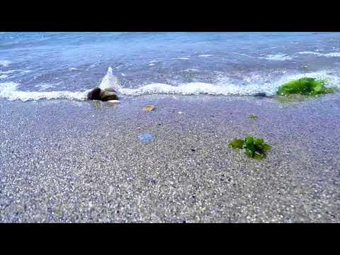 FREE HD video backgrounds – GoPro Hero4 raw footage 60fps seaside with sand and bebbles clip9480 20