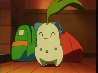 Chikorita in the anime is so damn cute!