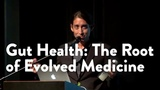Gut Health The Root of Evolved Medicine - Functional Forum February 2016