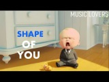 Ed Sheeran - Shape Of You  Baby Dance  Boss Baby  Animated (Official Video)  2017