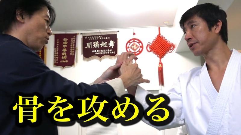耐えられない!中国武術は骨を攻める! 宮平保 Tamotsu Miyahira amazing technique