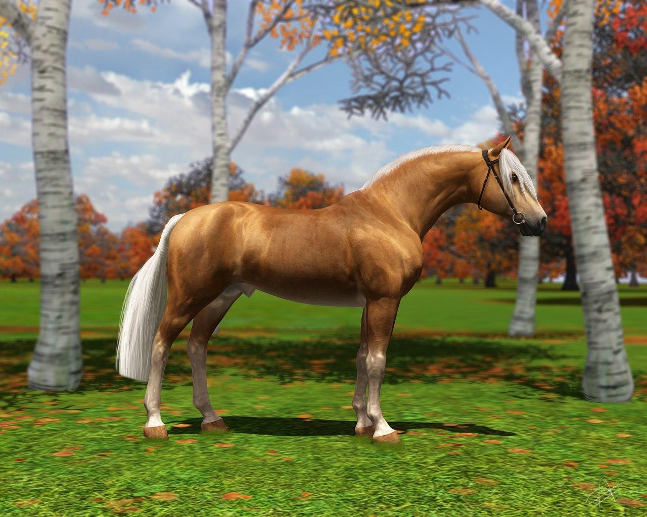 Регистрация лошадей в RHF 2 XrbHYzZHlX0
