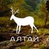 Алтай - Шавлинские озёра, горный поход