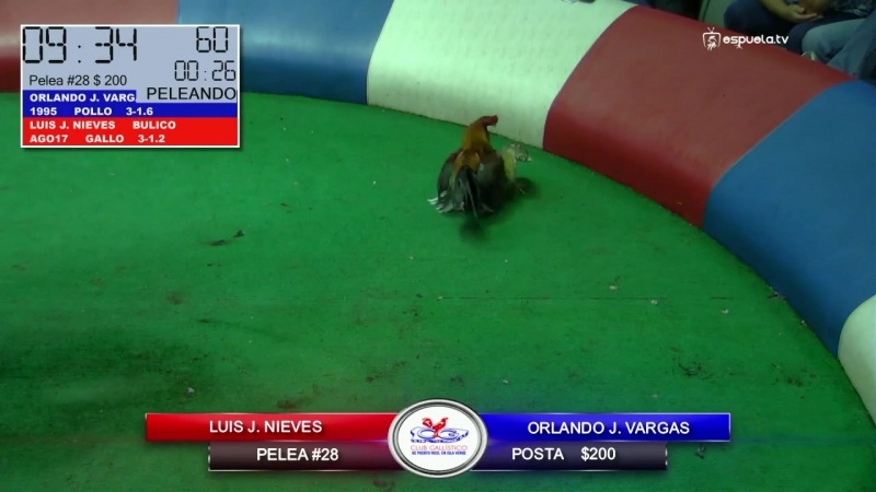 20180811_28 Luis J. Nieves vs Orlando J. Vargas Puerto Rico
