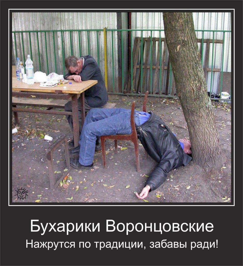 Торпеда алкоголизм отзывы