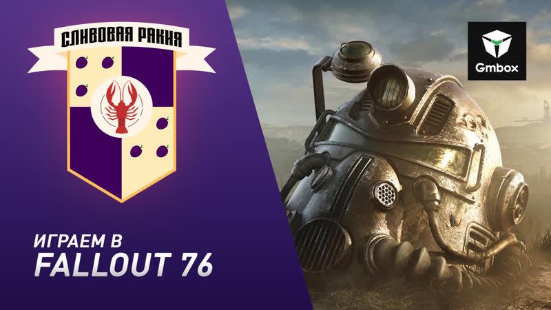 Стрим Fallout 76 Святослав Бочаров тестирует релизную версию